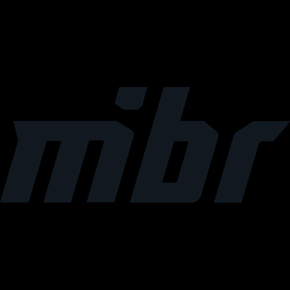 mibr_logo2018.png